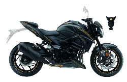 KIT DECO SUZUKI GSX-S 750 CARBONE